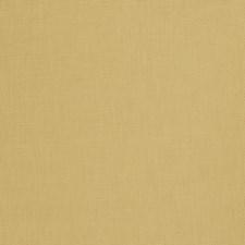 Coriander Solid Decorator Fabric by Fabricut
