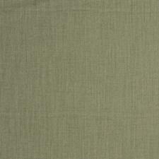 Lichen Solid Decorator Fabric by Fabricut