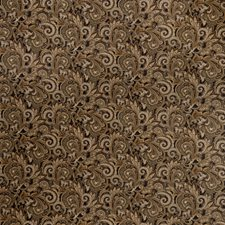 Volcano Paisley Decorator Fabric by Fabricut