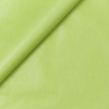 Citrus Decorator Fabric by Robert Allen /Duralee