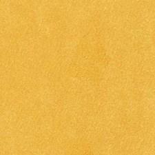 Goldenrod Decorator Fabric by Robert Allen