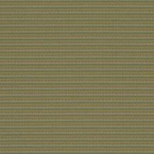 Spring Green Decorator Fabric by Robert Allen/Duralee