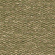 Grass Decorator Fabric by Robert Allen