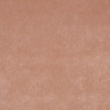 Salmon Decorator Fabric by Robert Allen