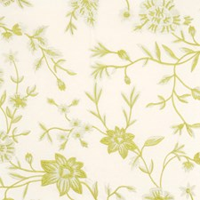 Kiwi Embroidery Decorator Fabric by Vervain