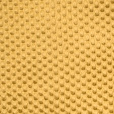 Goldust Solid Decorator Fabric by Vervain