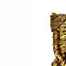 Gold Trim by Robert Allen/Duralee