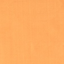 Curry Solid Decorator Fabric by Trend