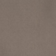 Bison Texture Plain Decorator Fabric by Trend