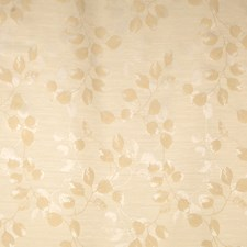 Oyster Asian Decorator Fabric by Trend