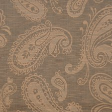 Marble Paisley Decorator Fabric by Trend