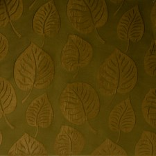 Olive Leaves Decorator Fabric by Trend
