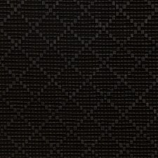 Onyx Decorator Fabric by S. Harris