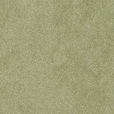 Parsley Decorator Fabric by Robert Allen