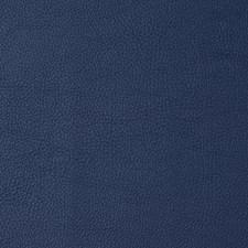 Deep Sea Decorator Fabric by Robert Allen
