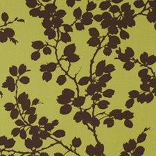 Fennel Decorator Fabric by Robert Allen