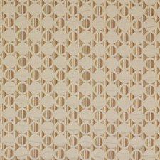 Summer Sun Decorator Fabric by Robert Allen