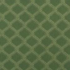Grass Diamond Decorator Fabric by Duralee