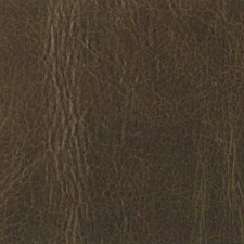 Forest Decorator Fabric by Duralee