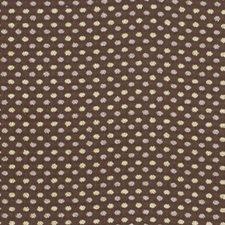 Sable Decorator Fabric by Robert Allen /Duralee