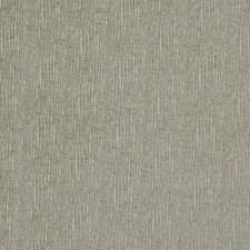Endive Decorator Fabric by Robert Allen