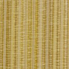 Chamomile Decorator Fabric by Robert Allen /Duralee