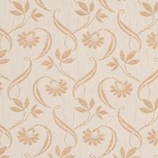 Desert Decorator Fabric by Robert Allen