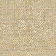 Desert Decorator Fabric by Robert Allen /Duralee