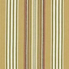 Field Decorator Fabric by Robert Allen /Duralee