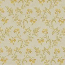 Cantaloupe Decorator Fabric by Robert Allen/Duralee