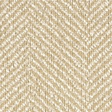 Champagne Decorator Fabric by Robert Allen