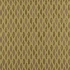 Cameo Decorator Fabric by Robert Allen /Duralee