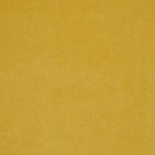 Moutarde Decorator Fabric by Robert Allen