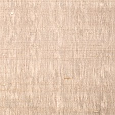 Birch Solid Decorator Fabric by Fabricut