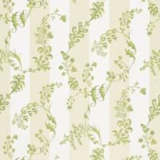 Citron Vert Decorator Fabric by Schumacher