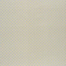 Bay/Citron Decorator Fabric by Schumacher