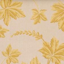 Butterscotch Decorator Fabric by Highland Court