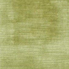 Chive Decorator Fabric by Highland Court