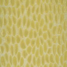 Maize Decorator Fabric by Robert Allen