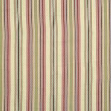 Zinnia Decorator Fabric by Robert Allen /Duralee