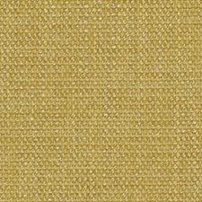 Coconut Decorator Fabric by Robert Allen