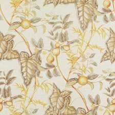 Natural/Gold Floral Large Decorator Fabric by Duralee