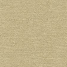 Beige Solids Decorator Fabric by Lee Jofa