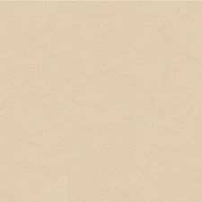 Canvas Solids Decorator Fabric by Lee Jofa