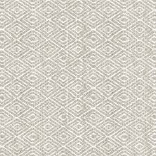 Taupe Texture Decorator Fabric by Lee Jofa