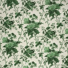 Paolos Green Botanical Decorator Fabric by Lee Jofa