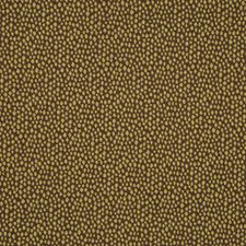 Boxwood Decorator Fabric by RM Coco