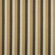 Cappuccino Decorator Fabric by Robert Allen