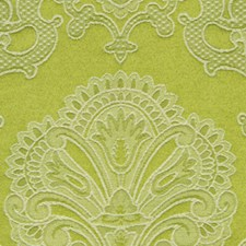 Sprout Decorator Fabric by Robert Allen
