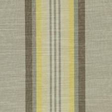 Silver Birch Decorator Fabric by Robert Allen/Duralee